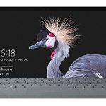 Microsoft Surface Pro - Recensione, Prezzi e Migliori Offerte. Dettaglio 2