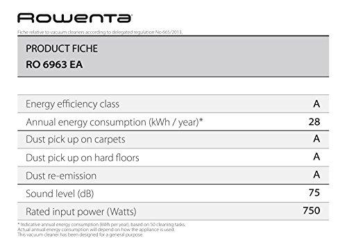 Rowenta RO6963EA X-Trem - Recensione, Prezzi e Migliori Offerte. Dettaglio 3