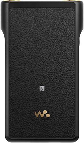 Sony NW-WM1A - Recensione, Prezzi e Migliori Offerte. Dettaglio 2