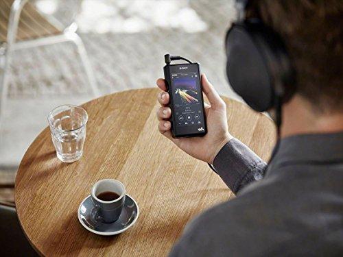 Sony NW-WM1A - Recensione, Prezzi e Migliori Offerte. Dettaglio 13