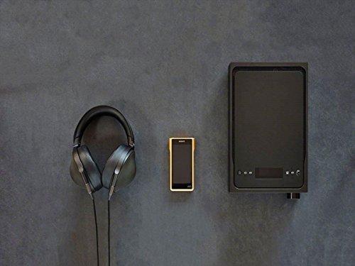 Sony NW-WM1A - Recensione, Prezzi e Migliori Offerte. Dettaglio 14