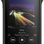Sony NW-WM1A - Recensione, Prezzi e Migliori Offerte. Dettaglio 1