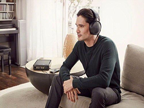 Sony NW-WM1A - Recensione, Prezzi e Migliori Offerte. Dettaglio 17