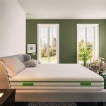 Baldiflex Green Spring - Recensione, Prezzi e Migliori Offerte. Dettaglio 4