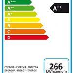 Hotpoint HFC 3C24 X - Recensione, Prezzi e Migliori Offerte. Dettaglio 6