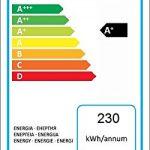 Beko RFSA210K20W - Recensione, Prezzi e Migliori Offerte. Dettaglio 2